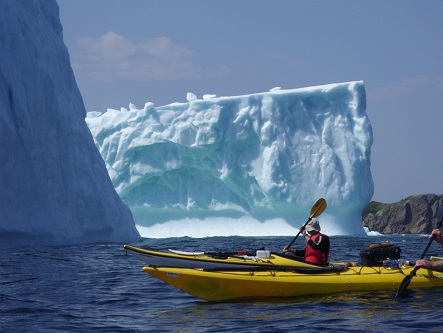 Kayaking beside icebergs